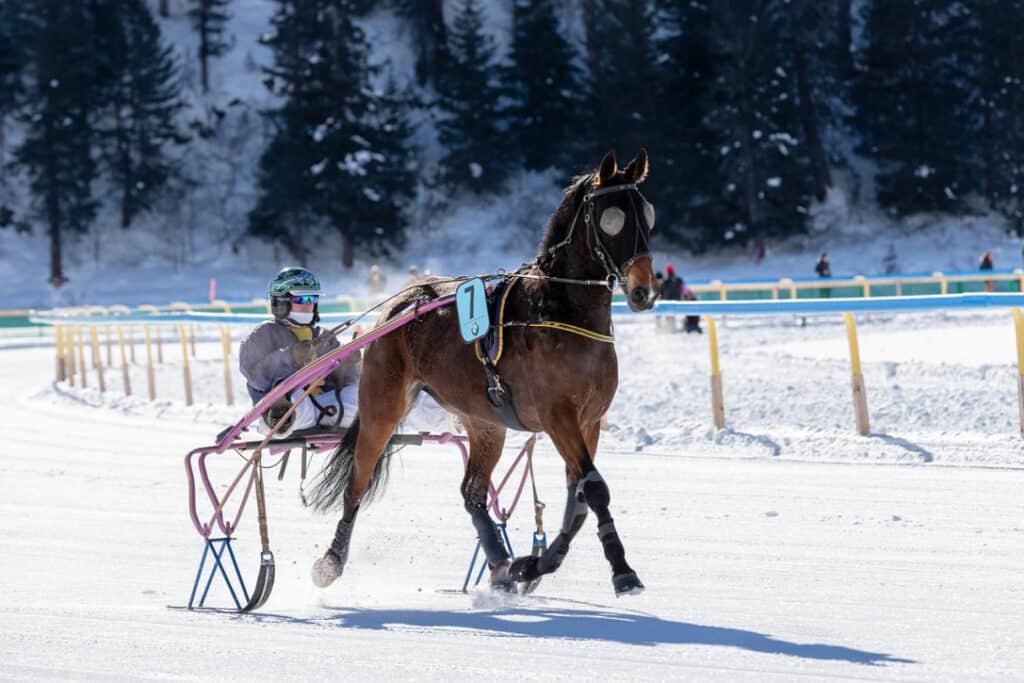 St. Moritz – Hiking, Biking, and Water Sports